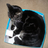 Teamfoster-Keefe12345's avatar