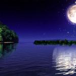 Moonlight12997's avatar