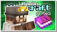 LP Minecraft på 90gQ S1 095