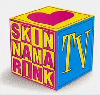 Skinnamarink TV.jpg