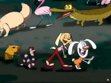 Brandy and Mr Whiskers