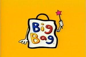 Big bag.jpg