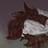 Coytexae's avatar