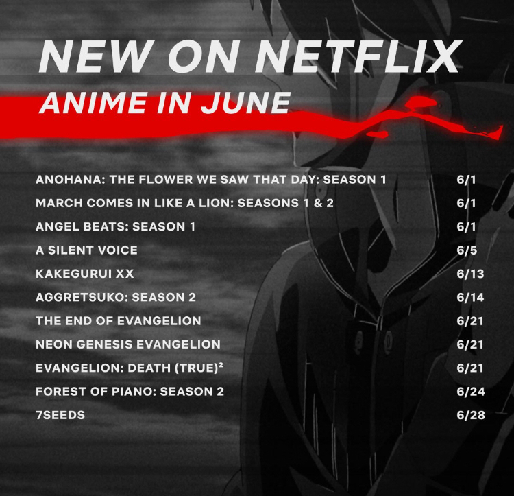 I highly recommend those who are new to anime and have a Netflix account to check these out.