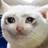 Toloru's avatar