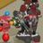 Avehtt Animal Jam's avatar