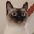 Cafeinlove's avatar