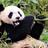 PrettyGoodGamer's avatar