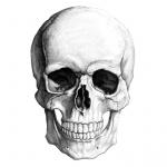 R3stl3SSWarr1or's avatar
