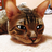 Thenetos's avatar