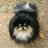 Dinan6's avatar
