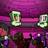 Tallesy333's avatar