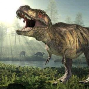 Dinos Game's avatar