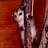 VeryNaruto's avatar