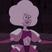 Perlzafidot 840's avatar