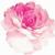 RainBlossom168