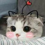 Kim Yunn's avatar