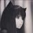 KiraTheBlackWolf's avatar