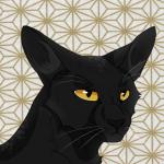 Pelage de pluie's avatar