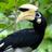 Jlopez9748's avatar