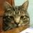ZachOWott's avatar