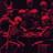 ProHealer's avatar
