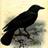 Flamingchemist's avatar