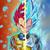 Goku6669