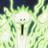 KuroUrufu's avatar