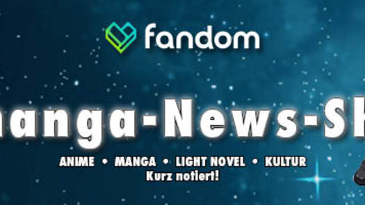 Sword Art Online Light Novel kommt im November auf Deutsch