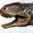 Savage Almond's avatar