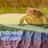 PotterHead2010G's avatar