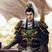 Sol Pacificus's avatar