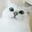 Легкокрылая Голубка's avatar
