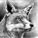 LaoNan88's avatar