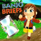 Banjo brief.jpg