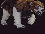 Panserbjørn