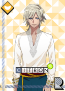 Citron R Standing Rehearsal unbloomed