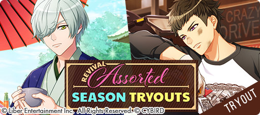 Assorted Season Tryouts banner