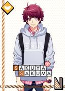 Sakuya Sakuma N Waiting for Spring unbloomed