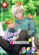 Citron SSR Summer Dare bloomed