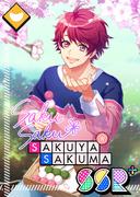 Sakuya Sakuma SSR Sakura-Colored Dream bloomed