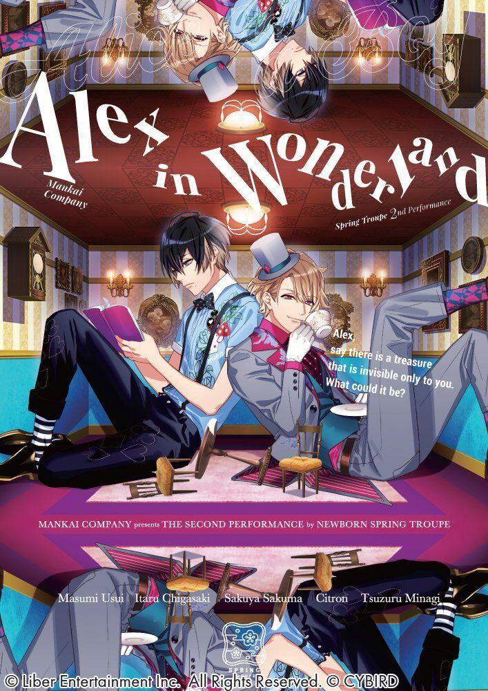 Alex in Wonderland EN poster