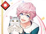 Muku Sakisaka SR 【Cat At Attention】
