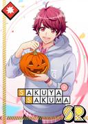 Sakuya Sakuma SR Demon in Training unbloomed