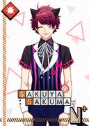 Sakuya Sakuma N Alex in Wonderland bloomed