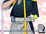Citron R 【The Spirit of Calligraphy】