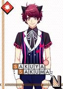 Sakuya Sakuma N Alex in Wonderland unbloomed