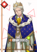Citron N Knights of the Round IV bloomed