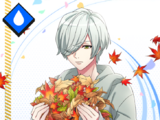 Hisoka Mikage SR 【Memories in Dry Leaves】